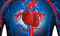 Что происходит с сердцем при инфаркте?