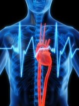 Что делать если невозможно нормализовать частоту сердечных сокращений?