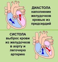 Cистолическая и диастолическая сердечная недостаточность