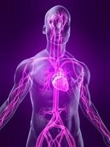 Что такое вегетососудистая дистония (ВСД) или нейроциркуляторная дистония (НЦД)